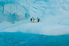 Adelie Penguins taking a break on an Iceberg